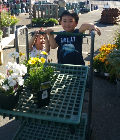 Picking out their flowers!