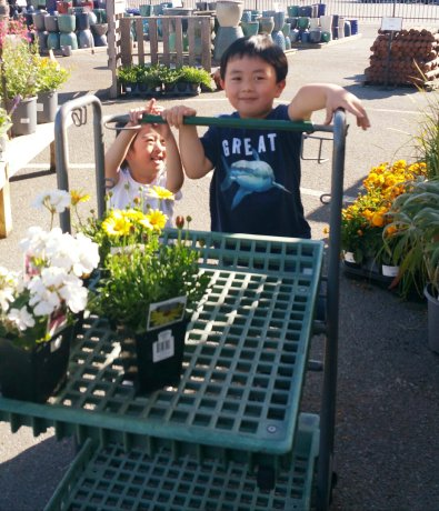 Flower shopping and feeling so proud to push the cart themselves