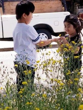 When he sees pretty flowers, he picks one for Ellis