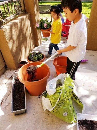 First day of gardening