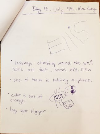 Observation notes and drawing. Ellis was the only one who saw a ladybug holding a phone.